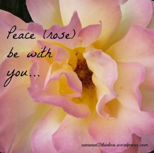 Peace Rose Be With You