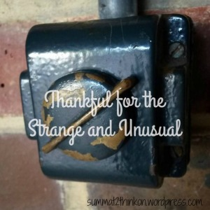 Thankful for the Strange and Unusual